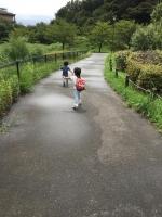 お散歩1 9・11