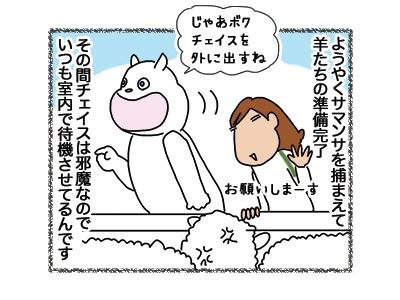 01102018_dog2.jpg