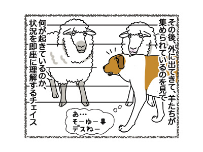01102018_dog3.jpg
