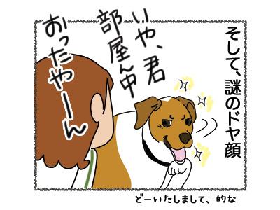 01102018_dog4.jpg