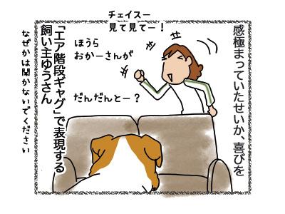 03092018_dog3.jpg