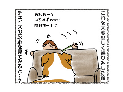 03092018_dog4.jpg