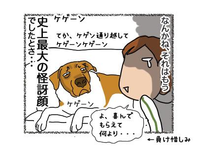 03092018_dog5.jpg
