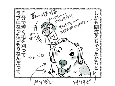 06092018_dog3.jpg
