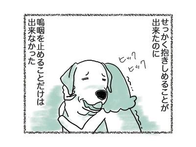 06092018_dog6.jpg