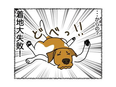 10092018_dog3.jpg