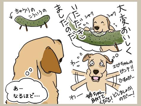 16082018_dog1.jpg