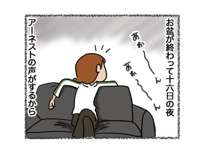 20082018_cat1.jpg