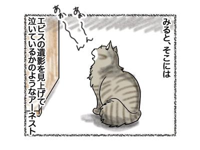 20082018_cat2.jpg
