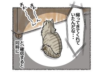 20082018_cat3.jpg