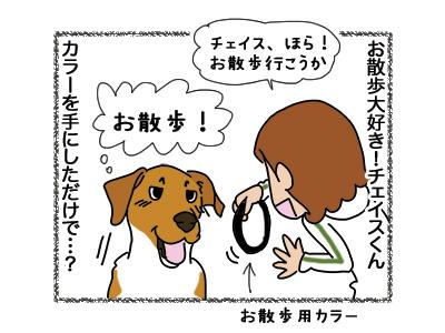 21092018_dog1.jpg