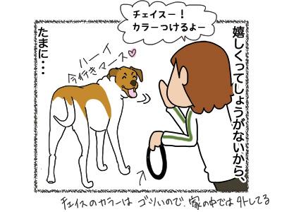 26092018_dog2.jpg