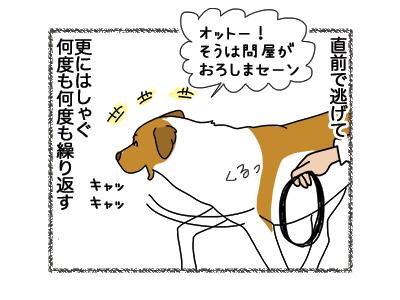 26092018_dog4.jpg