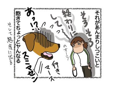 26092018_dog5.jpg