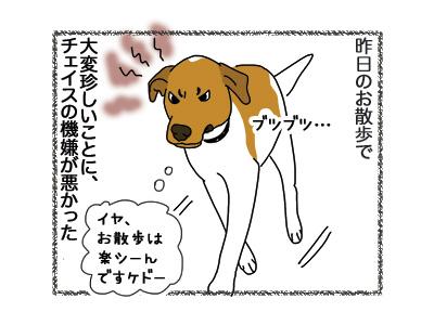 28092018_dog1.jpg