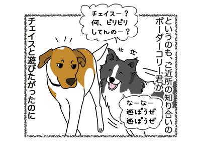 28092018_dog2.jpg