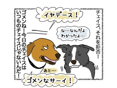 28092018_dog3.jpg