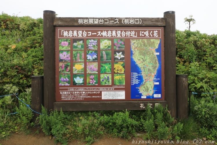8922 桃岩展望台コースーSN