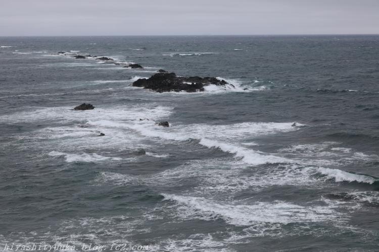 9286 スコトン岬ーSN