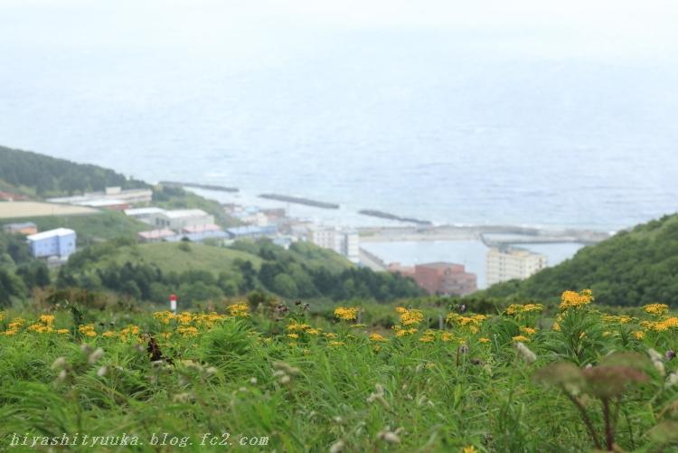 8944 桃岩展望台ーSN