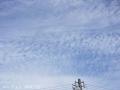 雲に癒される
