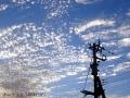 たまに見る雲