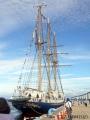 とやま帆船フェスタ2018の5