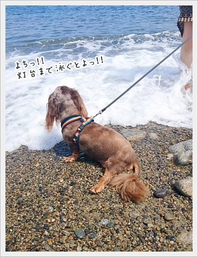 fc2_2018-09-13_04.jpg
