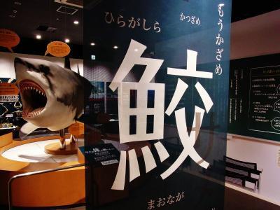 気仙沼 シャークミュージアム