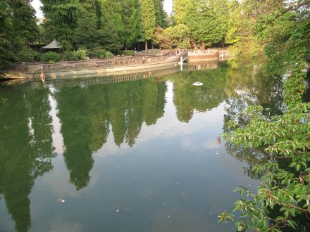 久し振りの井の頭公園