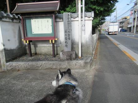神頼み散歩