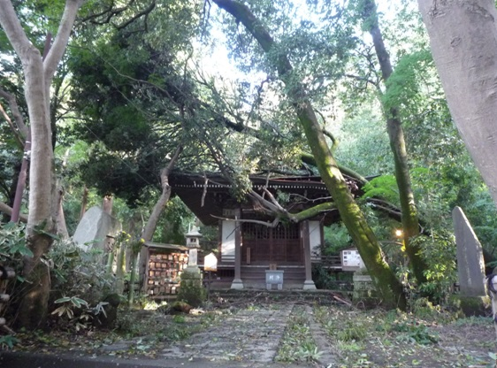 typhoon24_1.jpg