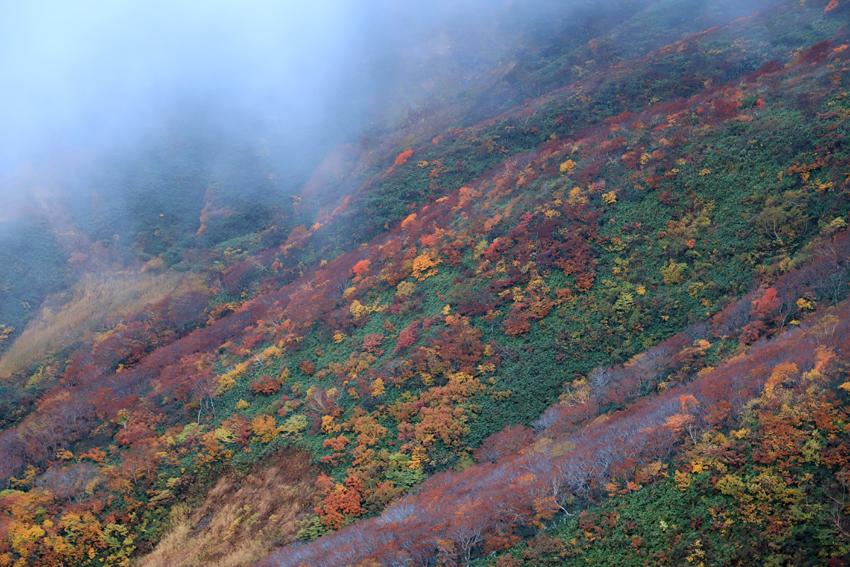 20181008雲間からの紅葉