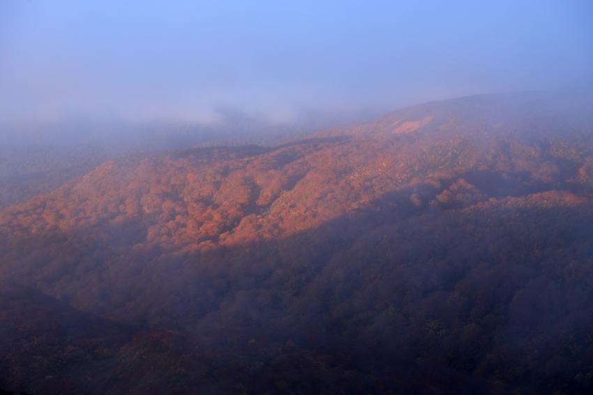 20181008朝陽に染まる栗駒山麓の紅葉