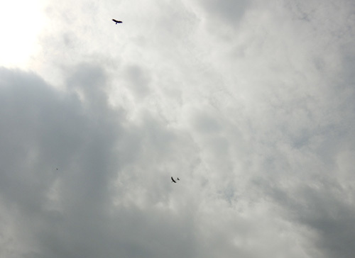 kh-18、飛んでるトコ。 その1。