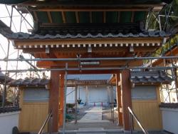 浄土寺復興工事 山門9