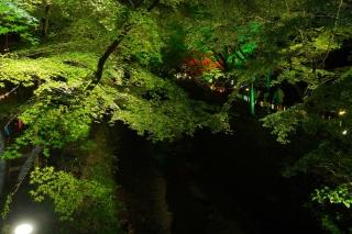 180814kitano(20).jpg
