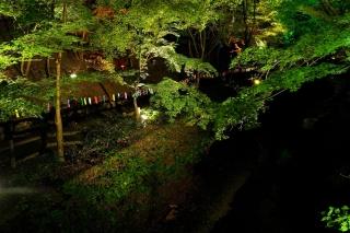 180814kitano(21).jpg
