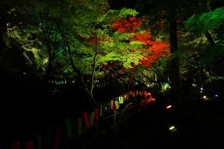 180814kitano(22).jpg