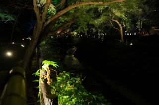 180814kitano(24).jpg