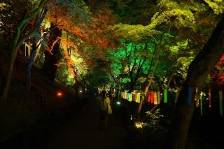 180814kitano(29).jpg