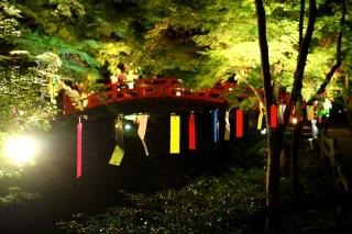 180814kitano(30).jpg