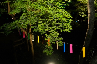 180814kitano(37).jpg