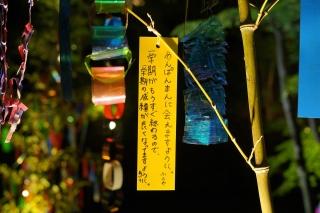 180814kitano(39).jpg