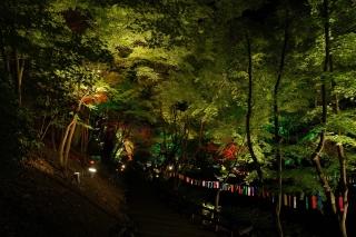 180814kitano(41).jpg