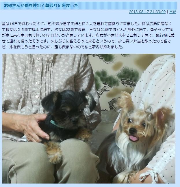ひめたん、SU-METALら家族で広島へお墓参りに!親戚のブログで判明