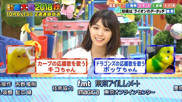 グータッチ動画大賞2018秋3