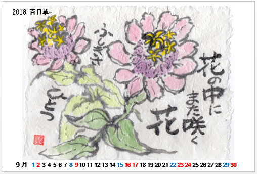 2018-09 百日草