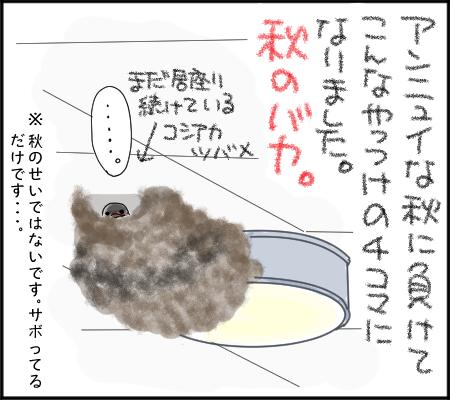 アンニュイな秋4