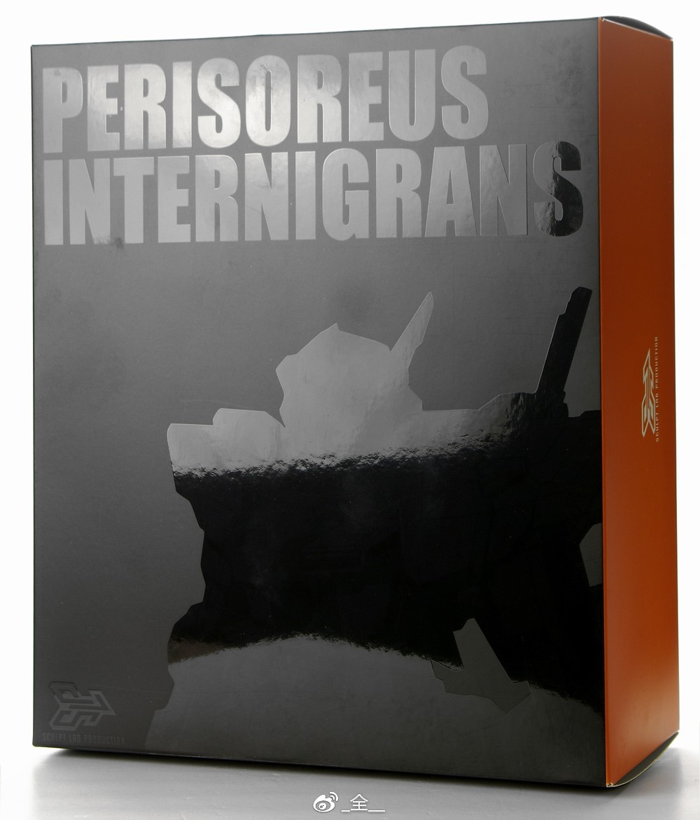 S307_Perisoreus_Internigrans_003.jpg